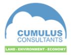 Cumulus Consultants Logo